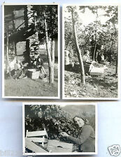 Italie. Italia . Lecco . les vendanges . vigneron . viticulteur . vin . 1943
