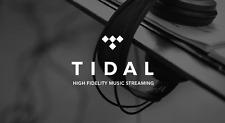 Tidal Premium   1 month