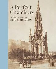 A PERFECT CHEMISTRY - LYDEN, ANNE M. - NEW BOOK