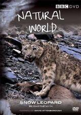 Natural World - Snow Leopard [DVD][Region 2]