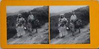 Argérie Vallée Da Tighrent Foto Stereo PL47 Vintage Analogica c1900