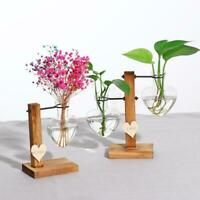 Stand Glass Planter Test Tube Vase, Glass Flowerpot with Vintage Wood Frame