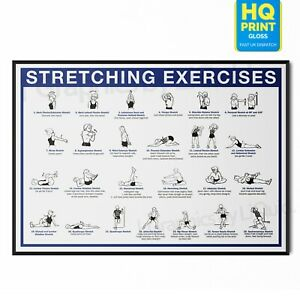 Stretching Workout Pain Relief Chart Exercise Muscle Poster | A5 A4 A3 A2 A1 |