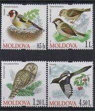 SET OF 4 MOLDOVA 2010 RARE BIRDS MNH STAMPS