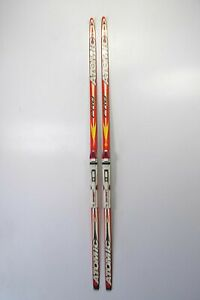 SALOMON Pro Skate Skating-Langlauf-Ski 172cm (1,72m) inkl. Bindung! #1088
