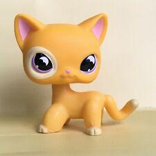 Littlest Pet Shop Lps Short Hair Cat Yellow Kitty Rare Purple Eyes kid Gift Toys