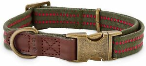(New) Reddy Olive  Webbed Dog Collar, Large/XLarge 16' - 26'