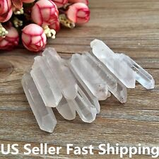 1/4lb Lot Tibet Natural Clear Crystal Quartz Points Terminated Wand Specimen US