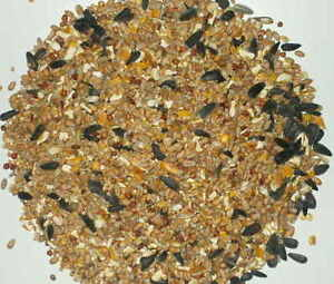 20KG HIGH QUALITY DELUXE WILD BIRD SEED ALL SEASONS GARDEN MIX WITH ANISEED