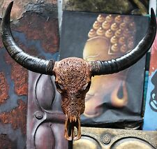 REAL HAND CARVED BUFFALO SKULL & HORNS / Taxidermy antlers longhorns steer bull