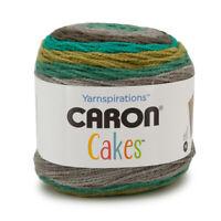 Caron Cakes Wool Acrylic Blend Worsted Striping Yarn Medium #4 Cake Knit Crochet