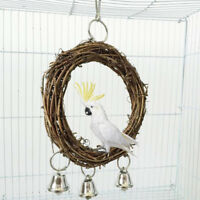 Pet bird parrot swing cage toy chew bit for parakeet cockatiel cockatoo conur_ft
