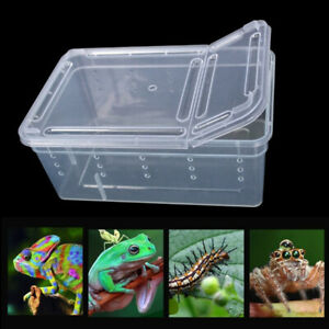Snakes Pet Products Insect Reptile Terrarium Living House Cage Feeding Box