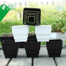 Meshpot 6 Pack Succulents Pot Planter Container Garden Pot Plastic Flower Pot