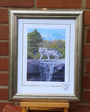 """Stephen Gayford limited edition framed print of a Wolf  """"Across the Falls"""""""