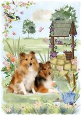 "Shetland Sheepdog Sheltie(4""x 6"") Blank Card/Notelet ""Wishing Well"" By Starprint"