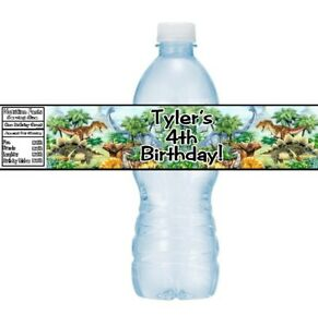 12 Dinosaurs Birthday Party Baby Shower Water Bottle Stickers Labels T-Rex
