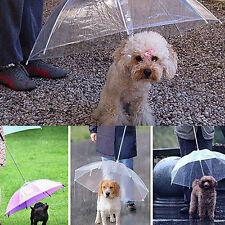Dog Walking Waterproof Built-in Leash Rain Sleet Snow Pet Umbrella up-to-date
