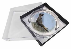 Meerkat Glass Paperweight in Gift Box Christmas Present, AMK-5PW