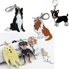 Etiqueta de perro Disco Mascota Identificación esmaltado Accesorios Collar