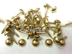 "1/4"" Dia Brass-Gilt 1/2""L Nails Upholstery Tack Decorative Nail-100-200-500-1000"