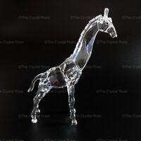 RARE Retired Swarovski Crystal Baby Giraffe 236717 African Wildife Mint Boxed
