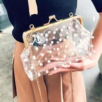 Vintage Clutch Pearl Beaded Transparent Chain Luxury Purse Crossbody Buckle Bag