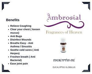 Ambrosial Eucalyptus Essential Oil 100% Natural Eucalyptus Globulus Nilgiri Oil
