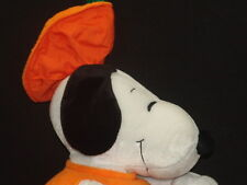 BIG CHARLIE BROWN AND THE GREAT PUMPKIN HALLOWEEN COSTUME SNOOPY DOG PLUSH TOY