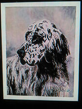 New Blue Belton English Setter Notecards 6 Note Cards 6 Envelopes Ruth Maystead