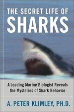 The Secret Life of Sharks: A Leading Marine Biolog