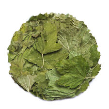 Black currant leaves 100 gr - 1000 gr Free worldwide shipping!