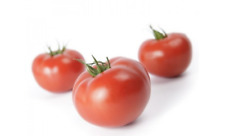 Tomato MAHITOS F1 seeds hybrid Red tomatoes Holland
