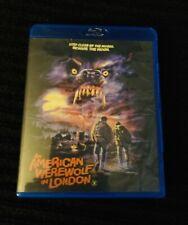 an american werewolf in london ( Custom Blu Ray Cover) No Disc!
