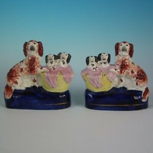 Pair Staffordshire Spaniel and Pups in Wash Basket