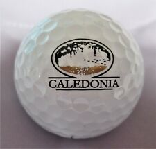 Caledonia Golf and Fish Club - Pawley's Island, Sc - Logo Golf Ball