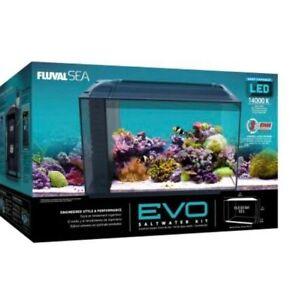 Evo 13.5 saltwater fish tank