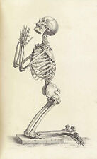 Lámina-Esqueleto Humano de rodillas rogando (Foto Afiche Vintage Arte)