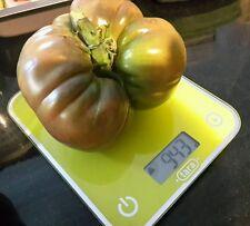 ☺20 graines de tomates noire de crimée récolte frejus 2016