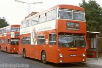 London Transport DM2593 Golders Green 1980 Bus Photo