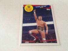 2015 Topps WWE Heritage Rookie of the Year #25 Daniel Bryan