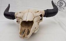 Tierschädel Western Bullenschädel Stierschädel ochsenschädel rinderschädel OVP