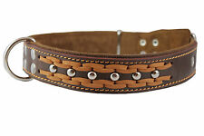 """High Quality Leather Dog Studs Braided Collar 19""""-24"""" neck 1.5""""wide"""