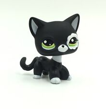 Littlest Pet Shop black cat Short Hair White Flower Patch Kitty LPS #2249 toys