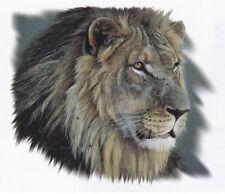 SUPERBE TEE SHIRT TETE DE LION  . S. M. L. XL. XXL. XXXL. XXXXL +  2  à 14 ans