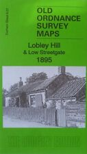 Old Ordnance Survey Map Lobley Hill & Low Streetgate Durham 1895 Sh 6.07 New