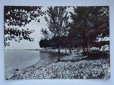 TOSCOLANO Maderno Campeggio La Foce Lago di Garda Brescia vecchia cartolina