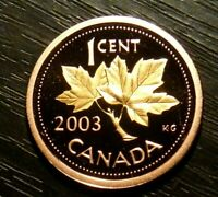 RARE 2003 ONE CENT PROOF GOLD PLATED FROM RCM ANNUAL REPORT- ONLY 10 000 ISSUED