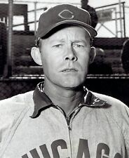 1953 Vintage Photo Chicago Cubs Catcher Al Evans at Spring Training in Mesa AZ