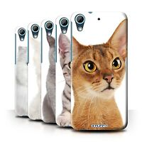 STUFF4 Back Case/Cover/Skin for HTC Desire 626/Cat Breeds